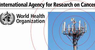 International Agency for Research on Cancer