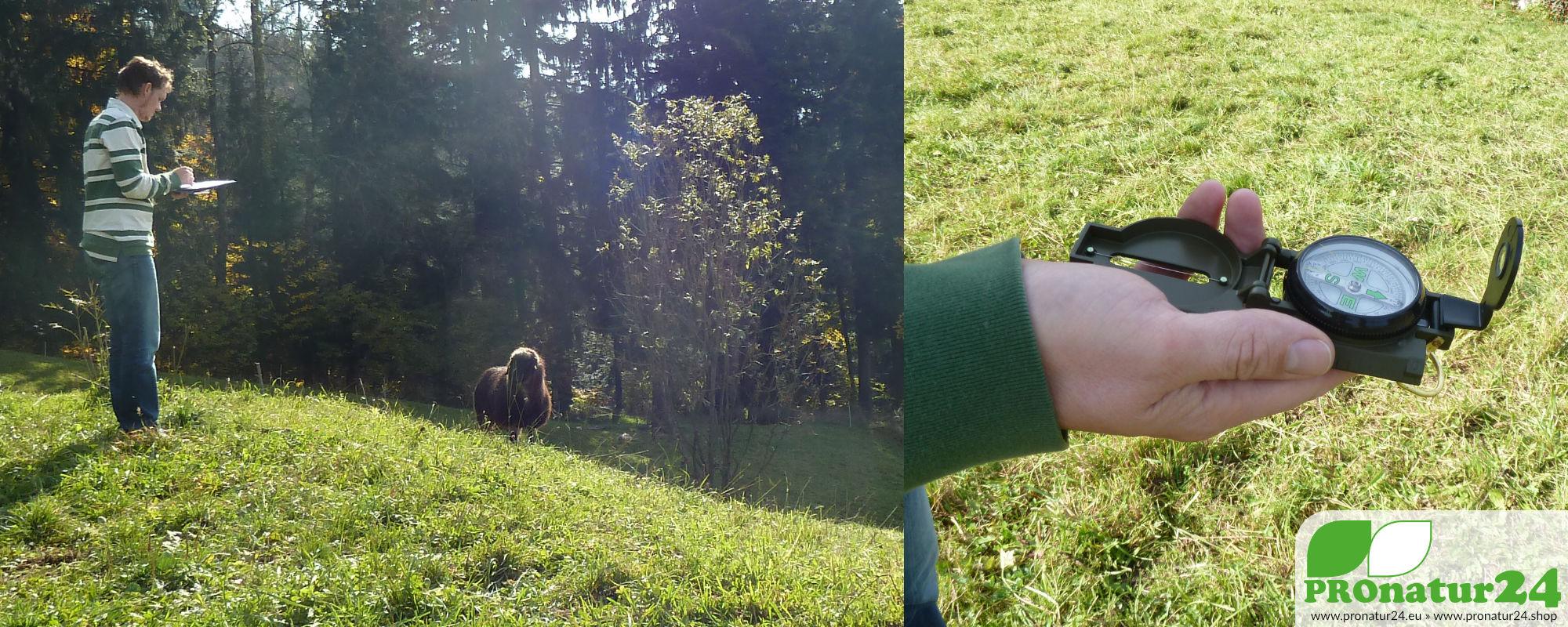 Leitfaden / Anleitung für die Suche nach Wasseradern › PROnatur24 ...