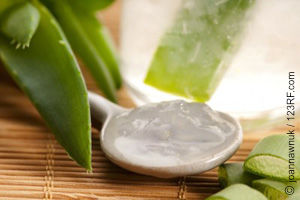 Aloe Vera, eine Medizin der Natur