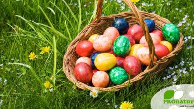 Farbenfrohe Eier zu Ostern (©123rf.com)