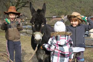 FEBSen beim Ponyfest kennenlernen