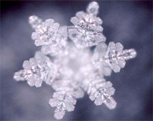 Wasserkristall unter Mikroskop (©masaru-emoto.net)
