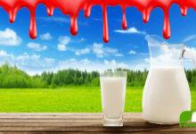Photo of Turbo Milchkuh – Verheizt für billige Milch. Dokumentation über Qual, Tod und Geiz ist geil!